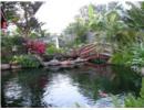 Sân vườn thoáng mát, nhiều cây xanh giữa lòng Hà Nội